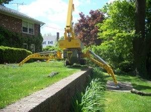 Tree Removal Service MA